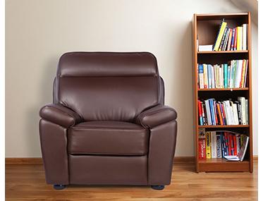PLANTEOUS 1 SEATER SOFA Godrej Interio Home Furnitures Living Room Sofas