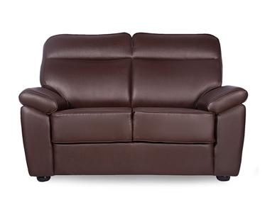 PLANTEOUS 2 SEATER SOFA Godrej Interio Home Furnitures Living Room Sofas