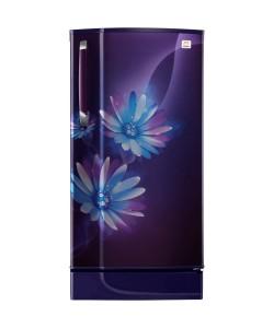 daisy_purple